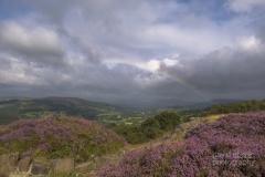 Derbyshire -4354