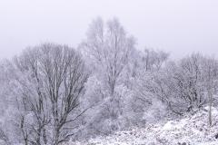 derbyshire-3377