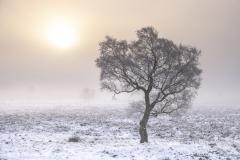 derbyshire-3416