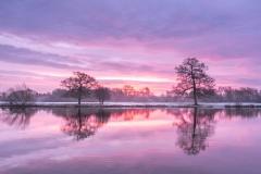 shelford sunrise -8582