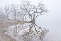 lakes-20-8332