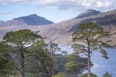 scotland-2018-2963